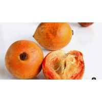 AGBALUMO/ UDARA (african star apple) 4 pieces