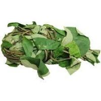 FRESH UZIZA LEAVES
