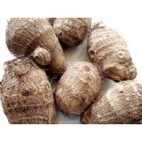 WHITE COCOYAM (For Soup)