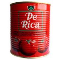 DE RICA TOMATO PASTE TIN 850g