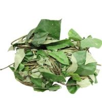 FRESH UZIZA LEAVES 100g